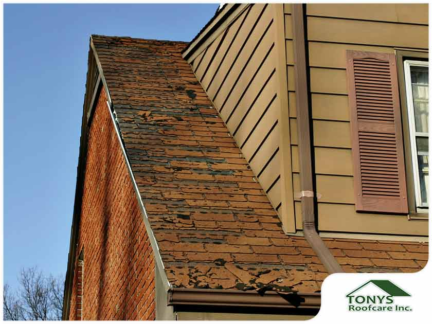 Top Reasons for Roof Deterioration